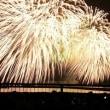 びわ湖花火大会に行ってきました。