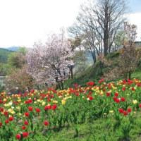断想:昇天日の旧約聖書(2017.5.25)