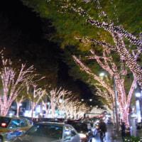 渋谷・代々木公園に青の洞窟が出現!!土曜の夜に見に行きました(2016.11.22~2017.1.9)@青の洞窟SHIBUYA実行委員会