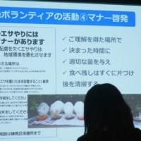 大阪ねこの会定期集会 ねりまねこさん特別講演!