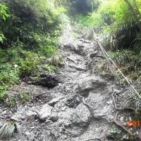原付キャンプツーリング(にこ淵、中津渓谷、天空の林道)