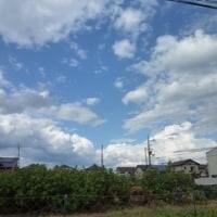 突然の雨 (>_<)