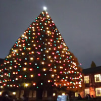 立教大学のクリスマスツリー
