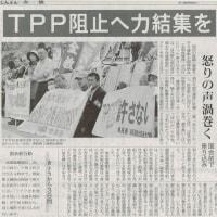 #akahata TPP阻止へ力結集を/怒りの声渦巻く 国会前で座り込み・・・今日の赤旗記事