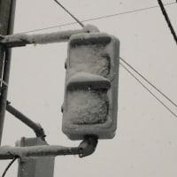 雪の朝です!