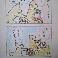 まるココの日々(60)