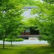 梅雨の季節の博多絶景・承天寺の苔編