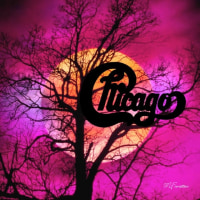 MOONLIT NIGHT(chicago)