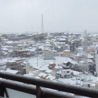 雪、雪、雪のセンター試験