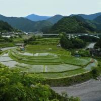 あらぎ島の棚田へ行ってきました。