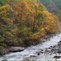 ★白馬村松川の渓谷美と黄葉が素晴らしかったぜい(2016)