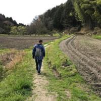 春野菜の天ぷらウイーク☆(コシアブラ)