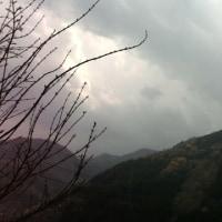 曇り空となってきました!