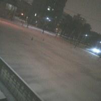 爆音で雷が!近い!?(((( ;゜Д゜))) 雪って言うより「霰( あられ)で銀世界」