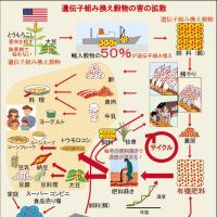 遺伝子組み換え作物や、化学物質まみれの食品により 国民が狂い始めています!!