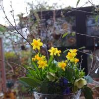 寒い朝と花あそびとネイル