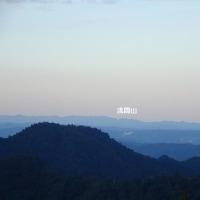 ショウマ(升麻)! 高尾山
