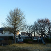 12月8日、午前7時過ぎの空模様