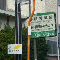 福島県田村市、上大越観照寺の榧です!!