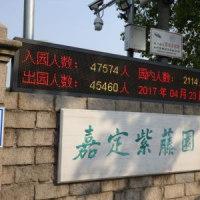 嘉定紫藤園へ花散歩(^^♪