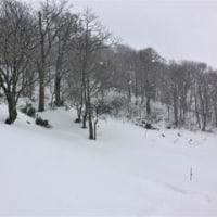 スキーの後のひとっ走り 2017山陰の冬ジョグ16