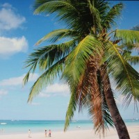 フィリピンの風景 ・・・ バタンガスのビーチ他