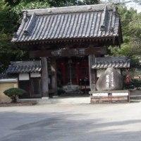 慈眼寺(じげんじ)ー金井神社(旧日光街道を歩く 54)