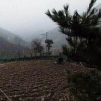 平成29年3月29日・今朝の東祖谷06:00は雪の中!