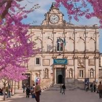 2005.04.23 イタリア バジリカータ州 マテーラ: 「崖の町」を彩る咲く花