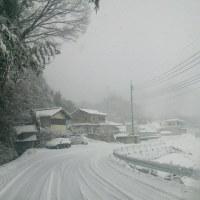 俺の村の景色