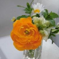 ☆小さな花束を……♪♬☆