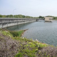 水戸の水道