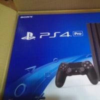 昨年PS4 Proをゲット