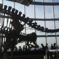 中国文明展&栗本薫展&恐竜展