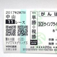 今週の結果 <ウインブライト スプリングS制覇!>