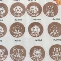 13周年イベントのお知らせ(*´ω`*)/💕