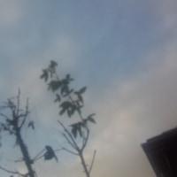 仙台の空12月5日
