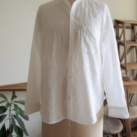 ライトカディのシャツ・・・ゴーシュ