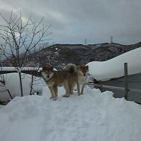 曇り一時小雪