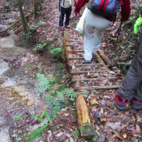 14 夫婦岩山(240m:山口県周南市)登山  無事に下山