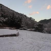 雪 夜明け