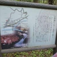 甘くない(+長男の単独介護日記)の巻
