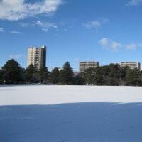散歩コースに雪が降る