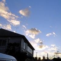 01月23日 風が吹くととても寒い