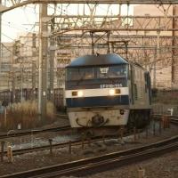 2017年1月17日  東海道本線  大船 EF210-105  71レ