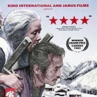 日本の映画を借りに図書館へ、、(良い日その1)