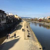 京都の秋 ~ 晩秋の鴨川
