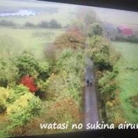 0323 一本の道 アイルランド