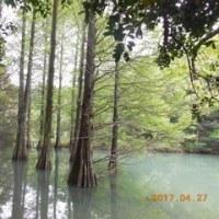 絶景 九大の森・バスツアー