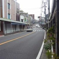 根岸の丘に古(いにしえ)の横浜を見る